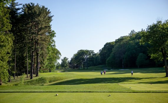 Copyright- and credit-free stock image of golf course